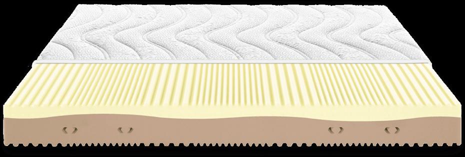 dorsal antares